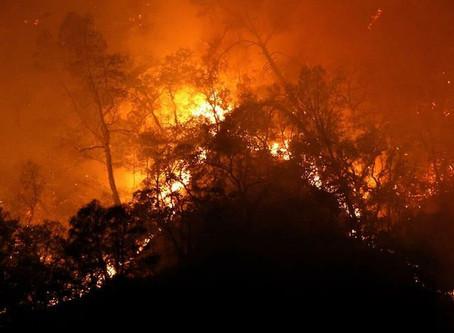 """Estados Unidos declara el """"estado de desastre"""" en California por los incendios"""