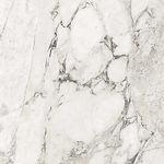 Ceramic - Marble look (Calacata).jpg