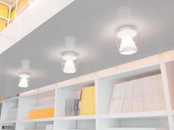 annex-ceiling-mp-01