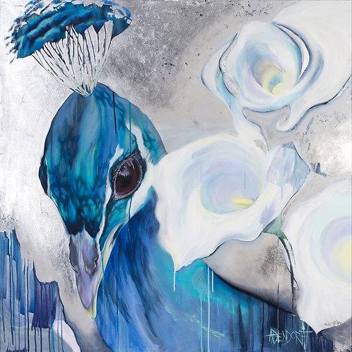 (Peacock)