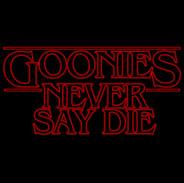 Goonies Never Say Die 2.jpg
