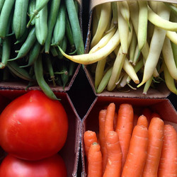 Variétés de légumes