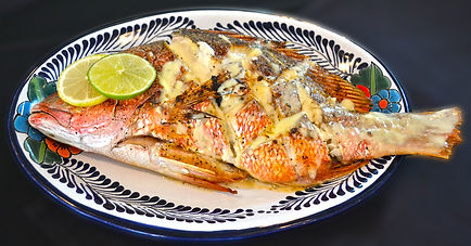 Broiled Snapper