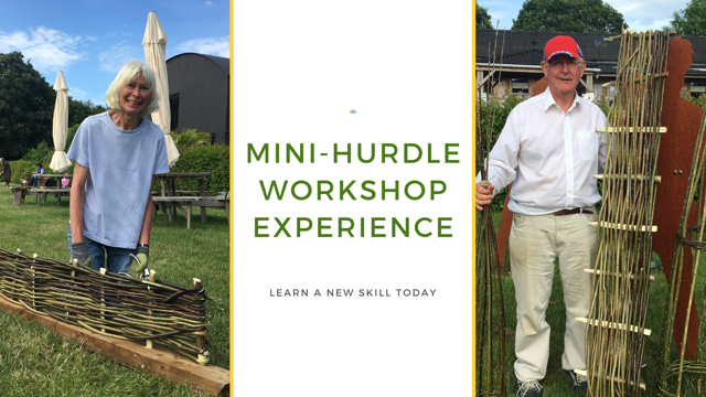 Mini Hurdle Workshop Experience