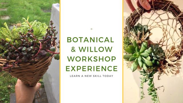 Botanical Willow Workshop