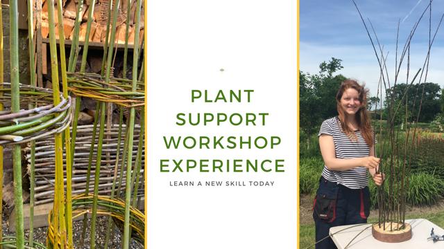 Plant Support Workshop