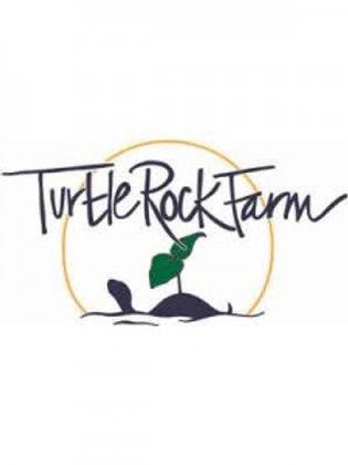 turtle-rock-225x300.jpg