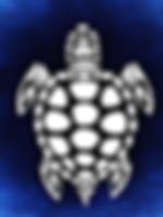 terrapin icon.png