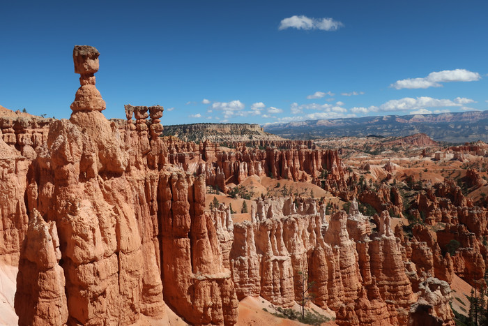 Day 4: Bryce Canyon and Highway 12