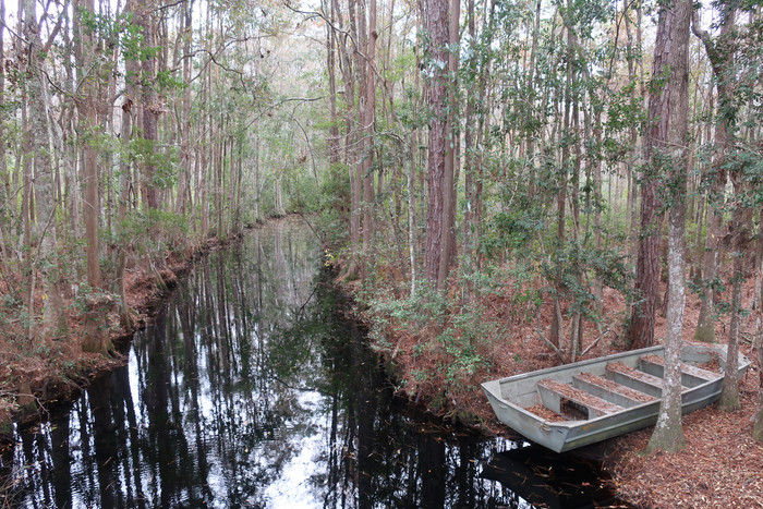 Day 55: Okefenokee Swamp and St. Augustine