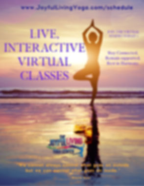 Live, Interactive Virtual CLasses-2.jpg