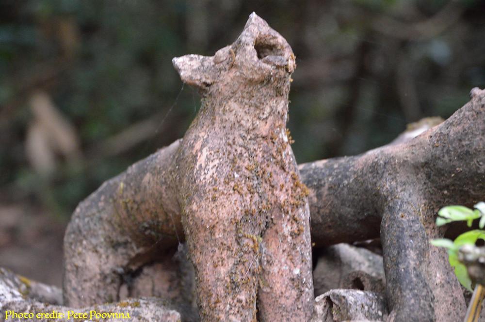 A century-old Terracotta of a dog 'Betegara' inside the Grove