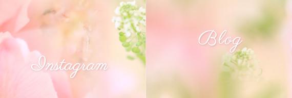 ラシェリクルール春のリッチメニュープレゼント_instagramblog_02.