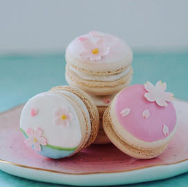 Macarons with cherry blossom details