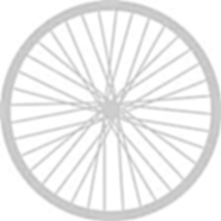 bike wheel.png