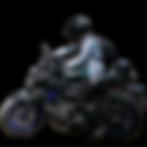 kisspng-silhouette-wheel-panorama-painti