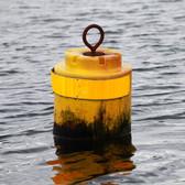 Small Yellow cylindrical mooring buoy.jp
