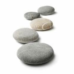 flat pebble image.jpeg