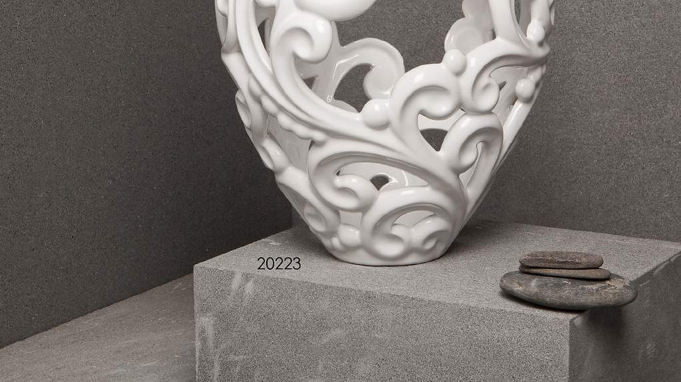 VASO 20223