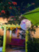 web pic arbor.jpg