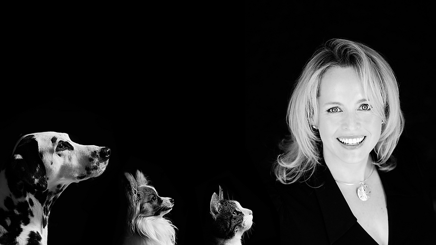 liz website background scaled editted.pn