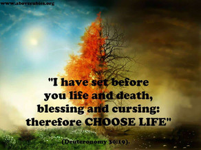 Life or Death, You Choose