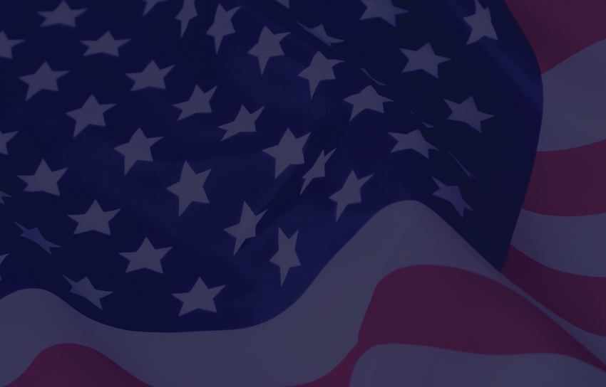 cover image Flag-01.png