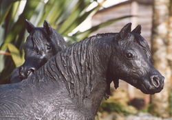 Miniture Shetland Ponies - lifesize - bronze resin