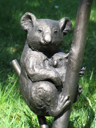Koala & Young