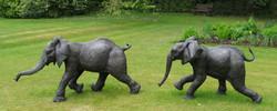 Kimba & Chinja Large Running Elephant Calves