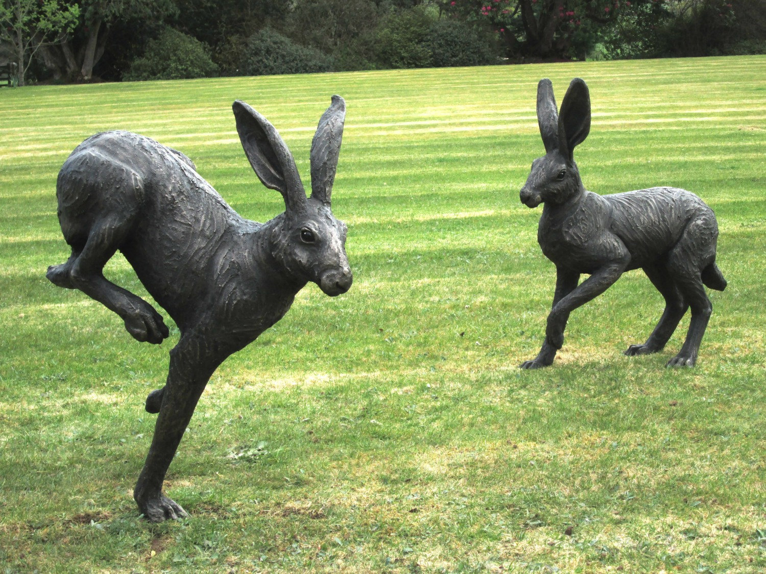 Large Running Hare and Hare about to Run