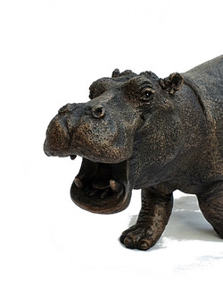 Steve Hippo - close up - bronze resin - Suzie Marsh