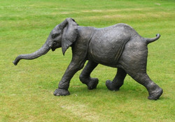 Kimba Running Elephant Calf