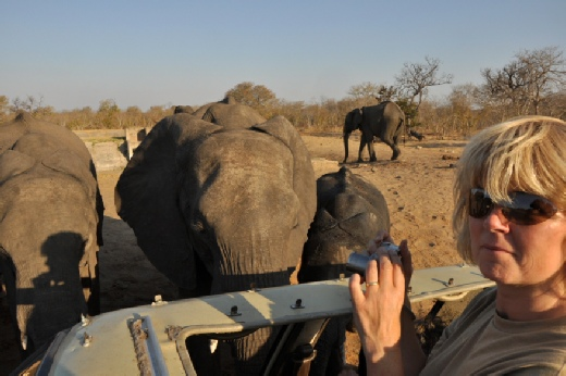 Me in  Zimbabwe 2012 with The L Family of elephants