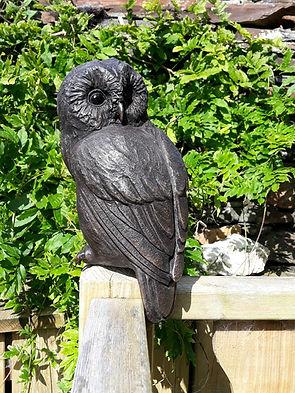 Owl only Suzie Marsh.jpg
