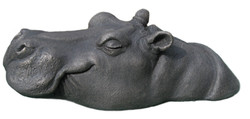 Grace baby hippo head