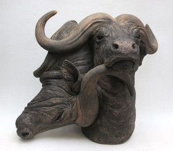 Suzie Marsh -  Buffalo. Heads - hand-built in stoneware clay - 56cmH x 60cmW x 47cmD