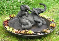 Elephant Wallow & Pond