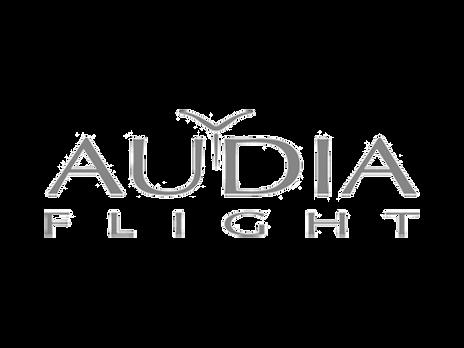 Audia flight.png