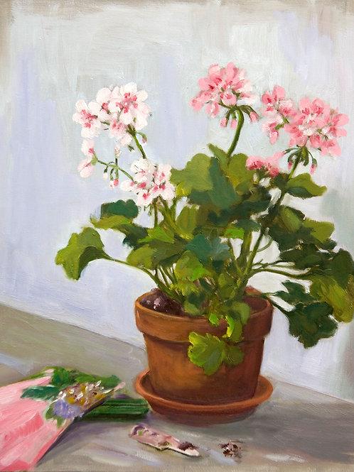 "Sonia O""Mara, Pink Geraniums, oil/panel, 14 x 11"""