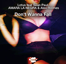 Don't Wanna Fall artwork.jpg
