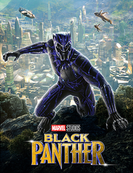 Black Panther and Wolf Warrior across Cultures