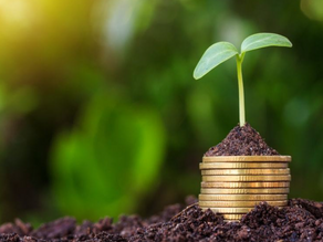 How accounts and finance gives businesses the freedom to grow.