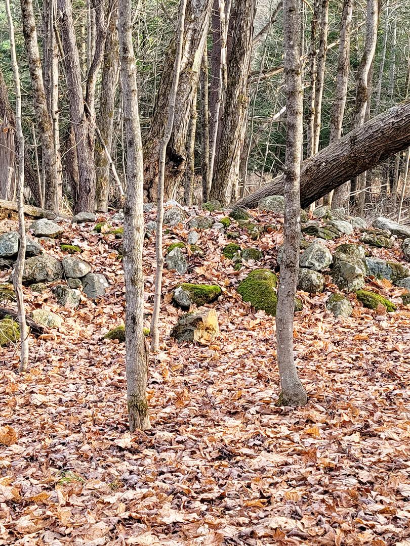 Un des quelques amas de pierres sur les lieux. (Martin-Billetdoux).  Photo : Denis Tremblay, 2020.