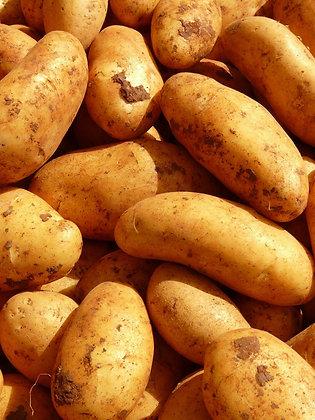Ziemniak Frytkowy 15kg