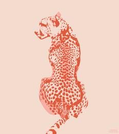 Cheetah Print, Adobe Illustrator