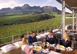 Guardian peak vineyards.jpg