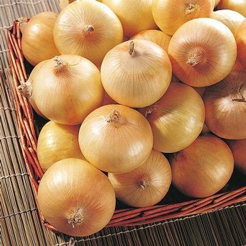 Yellow Onions - 2 lb bag