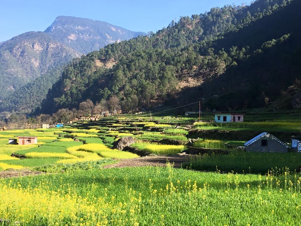 Scenic Village View