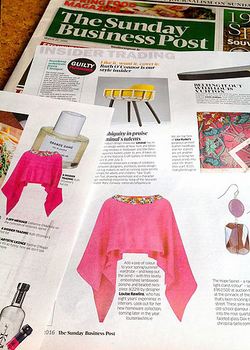 Louise Rawlins The Sunday Business Post Magazine 27.3.16
